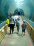Ruthie and the boys at Colchester Zoo.