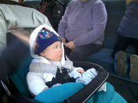 Alfie on the train at the East Anglian Railway Museum.
