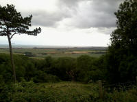 Views from Lympne.