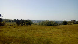 Woodbridge from Sutton Hoo.
