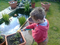 Mason watering the garden at Kates.