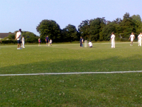 Mason at the crease.