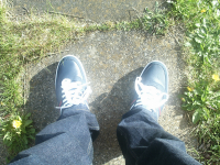 My new trainers. So clean they actually shine! I winder how long that'll last...