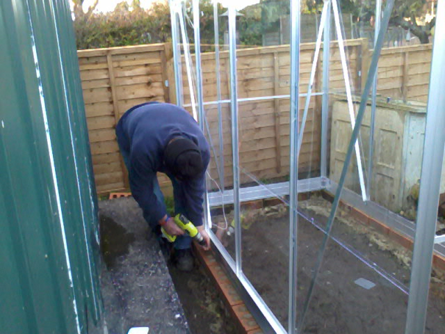 Ron putting the greenhouse up.